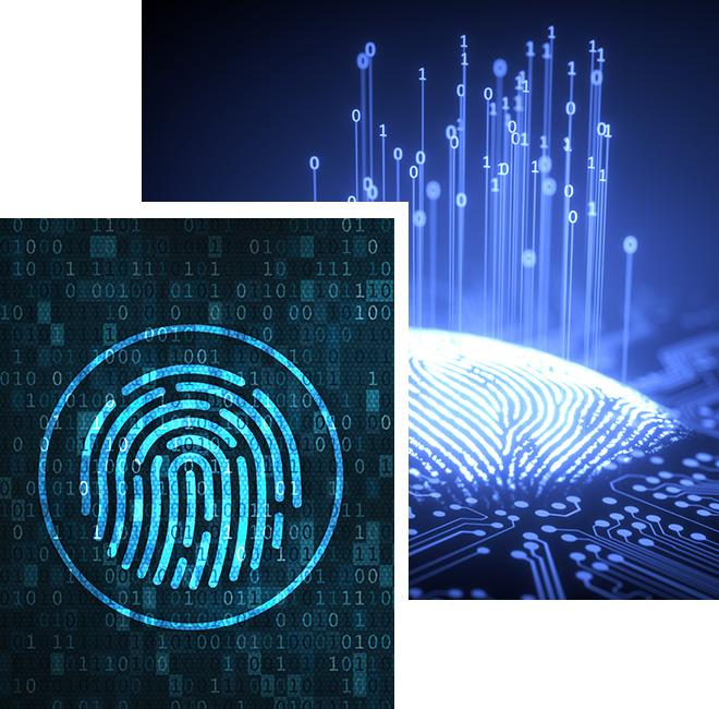Electronic Signature (E-Signature)