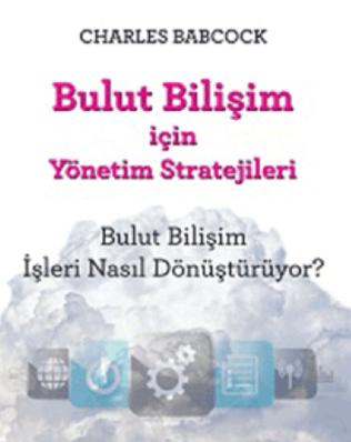 Bulut Bilişim İçin Yönetim Stratejileri